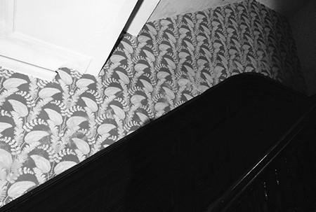 hoarders_stairway